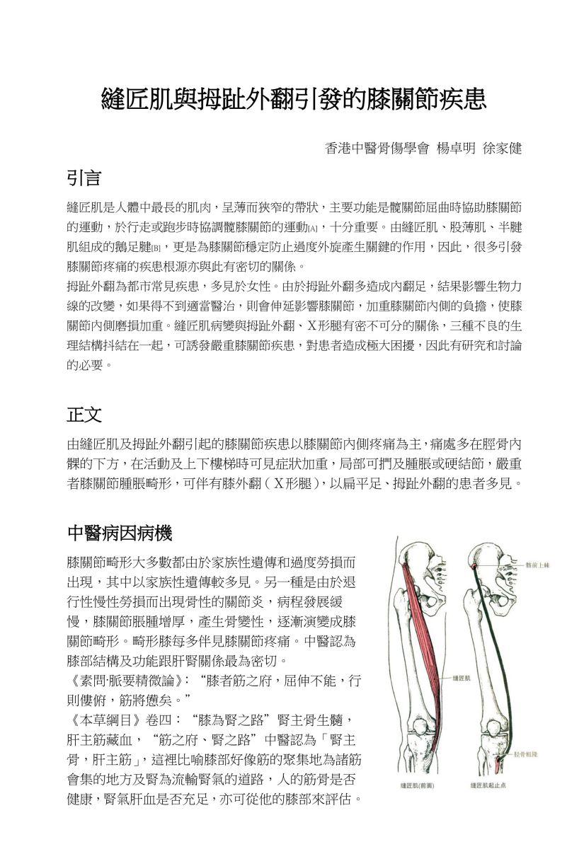縫匠肌與拇趾外翻引發的膝關節疾患